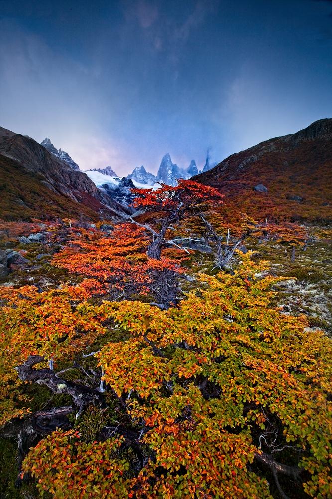 020_Patagonie