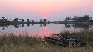 delta Okawango