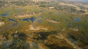 let nad Okawango